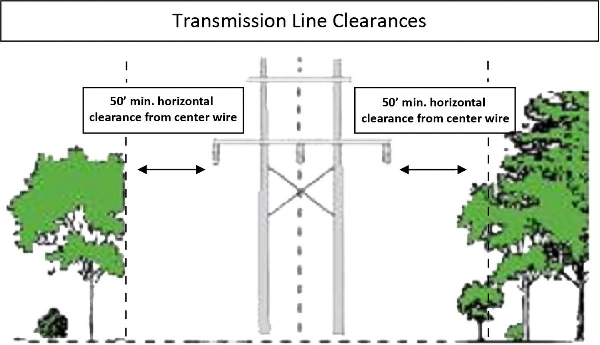 What Are The Clearance Specifications For My Trees